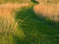 Prairie Earth Trail, Tallgrass Prairie Preserve