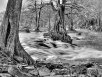 Guadalupe River-black & White