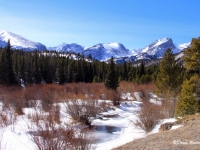 Winter's Peace At Rocky Mountains