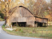 Country Barns In Autumn