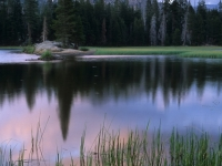Duck Lake, Alpine County, California