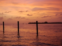 Pilings Worship Sunset