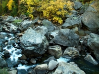 Merced River And Boulders, Autumn: Yosemite National Park