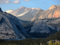 Lake Tenaya And Mt Conness - Yosmite National Park