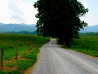 Smokey Mountains Peaceful Side - Cades Cove