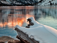 Icy Reflection, Twin Lakes, California