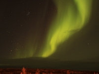 Northern Lights, Magic Of Mother's Nature