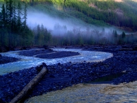 Early Morning Carbon River