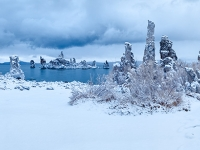Fresh Snowfall At Mono Lake