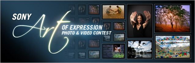 Art Of Expression Photo Contest