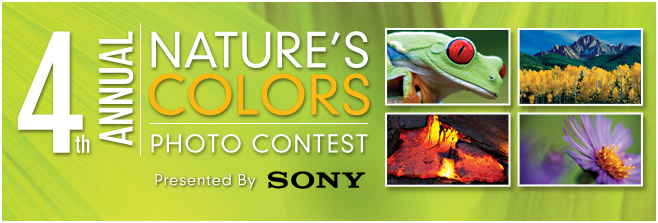 4th Annual Nature's Colors Photo Contest