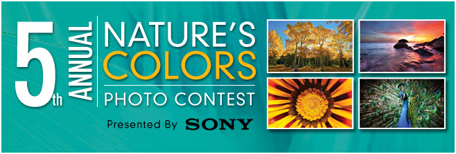 5th Annual Nature's Colors Photo Contest