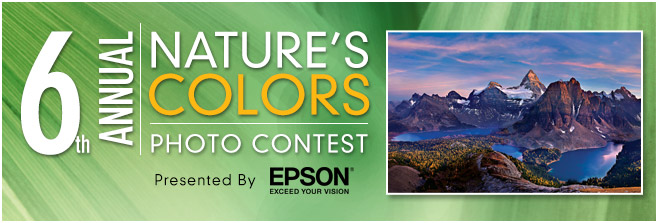 6th Annual Nature's Colors Photo Contest