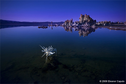 Eleanor Caputo - Mono Lake