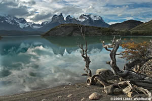Two Seasons In Patagonia