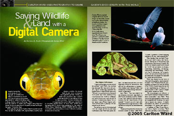 Saving Wildlife & Land With A Digital Camera