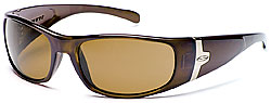 Smith Optics stylish Shelter sunglasses
