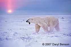 Churchill, Manitoba