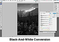 Black-and-White Conversion