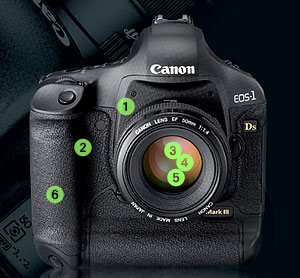 First Look: Canon EOS-1Ds Mark III