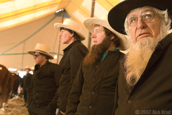 "Amish farmers discuss the quality of the horses for sale at the Bart Township ""mud sale,"" one of the spring auctions of farming machinery, quilts and household goods held in Lancaster County, Pennsylvania."