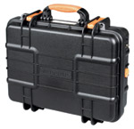vanguard safe case