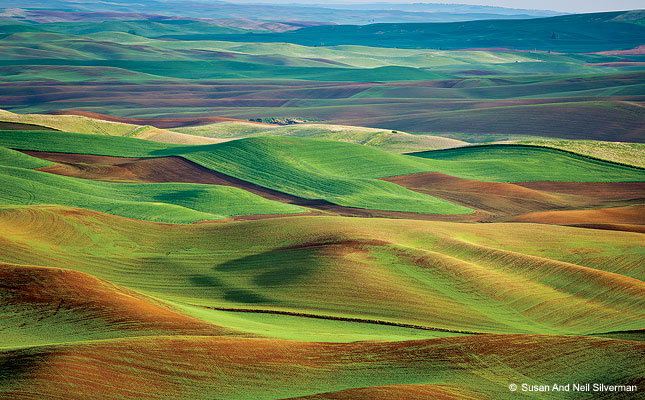 The Palouse, Washington State And Idaho