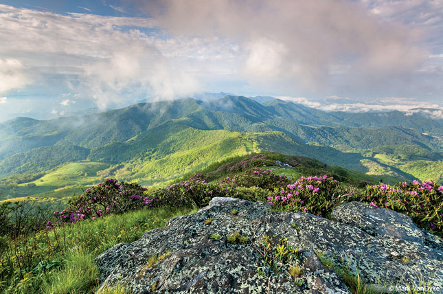 Grassy Ridge Bald, Roan Highlands, North Carolina