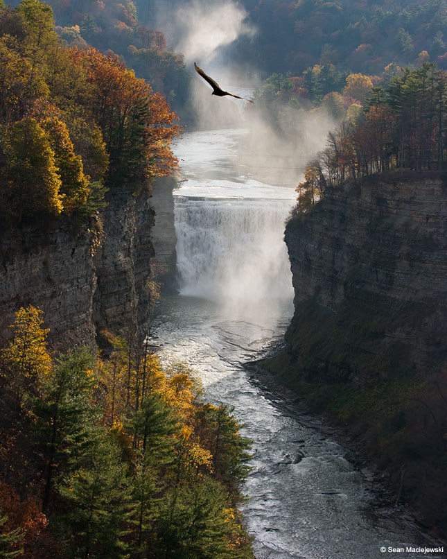 Letchworth State Park, Genesee Region, New York
