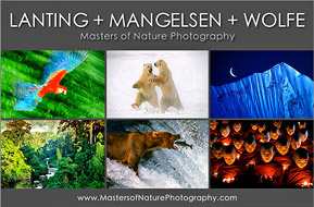 Masters of Nature Photography