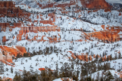 """""""Bryce Canyon National Park"""" By Valerie Millett"""