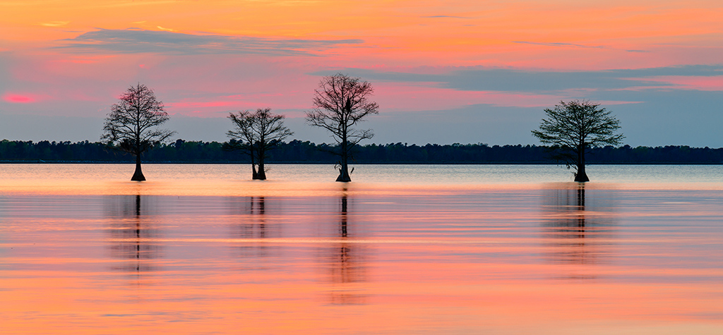 Lake Moultrie Sunset