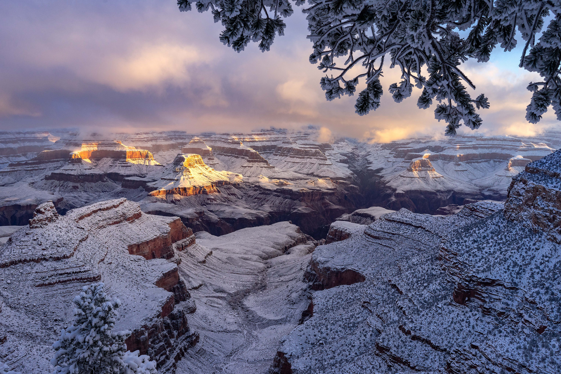 Canyon First Light Of 2019 by Archie Tucker
