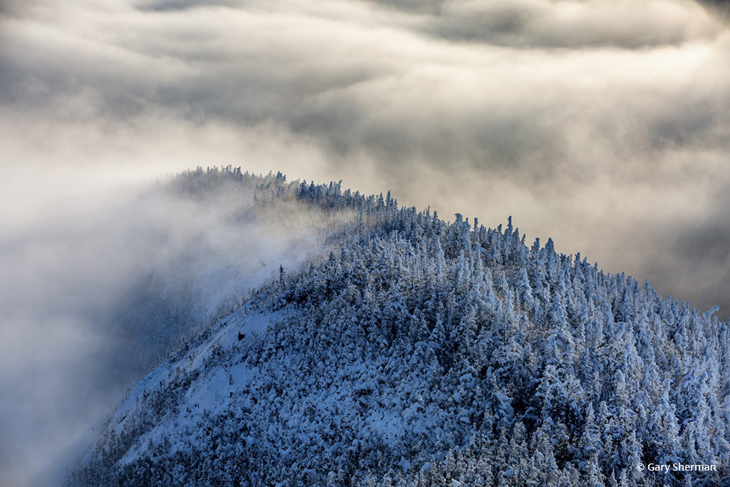 """""""Frosted Ridge"""" By Gary Sherman"""