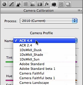 Camera Calibration tab in Adobe Camera Raw