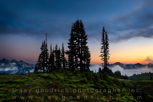 The Tatoosh Range at Sunset, Mount Rainier NP by Jay Goodrich