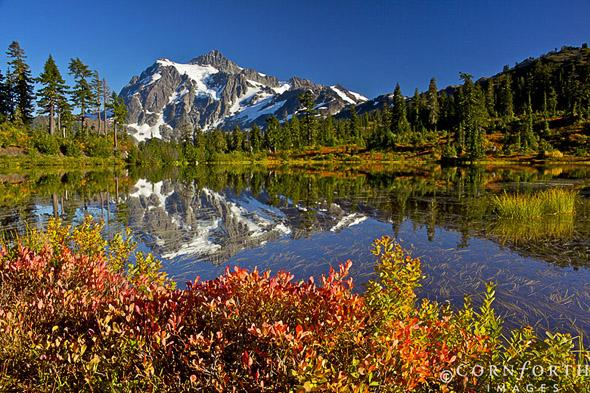 Picture Lake Fall Reflection 5, Mt Baker-Snoqualmie National Forest, Washington
