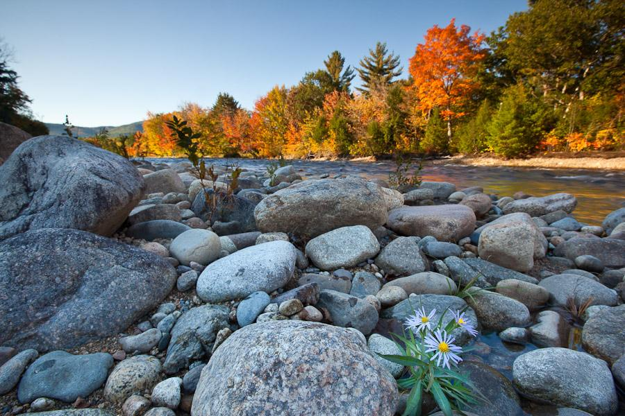 The Swift River in New Hampshire's White Mountains.