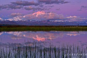 Denali-Cloudy-Sunrise-Reflection-1_Denali-National-Park-Alaska