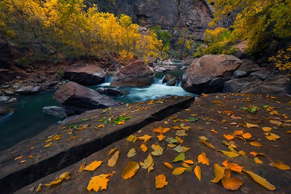 Along-the-Riverwalk-Zion-National-Park-Utah