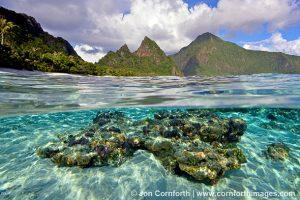 Ofu-Island-Coral-Over-Under-1_National-Park-of-American-Samoa-Ofu-Island-American-Samoa