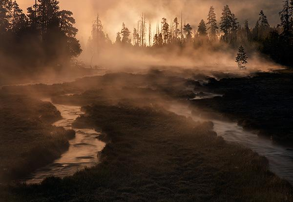 Morning-mist-yellowstone