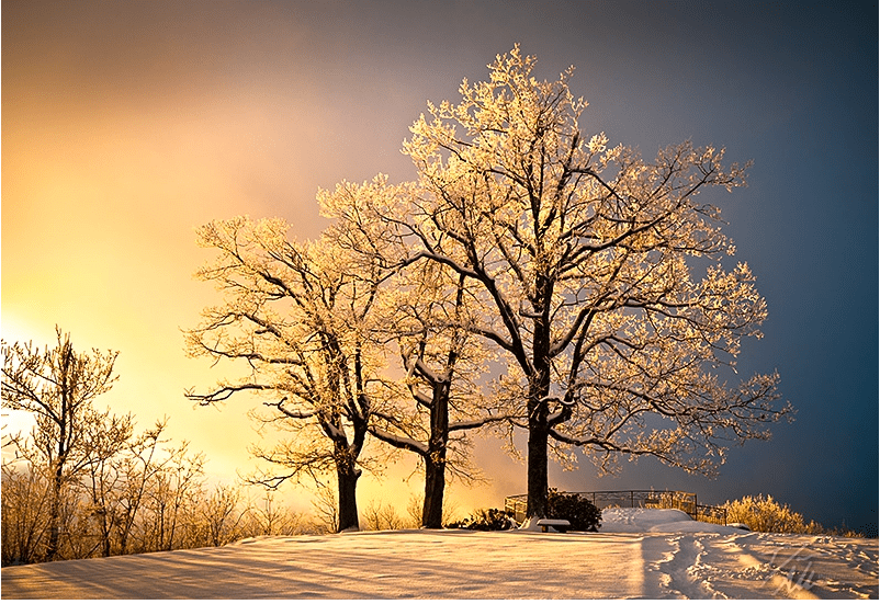 Dave-Allen-Luminous-Blue-Ridge-Winter-Sunset