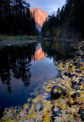 El Capitan and the Merced River, autumn, Yosemite NP, CA, USA