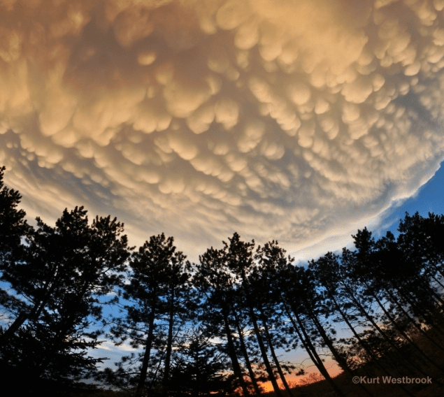 Mammatus Glorius by Kurt Westbrook