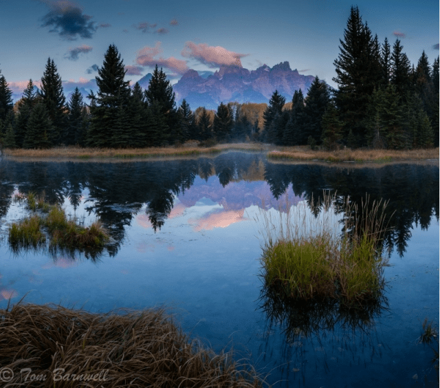 Schwabacher's Landing Beaver Ponds by Tom Barnwell