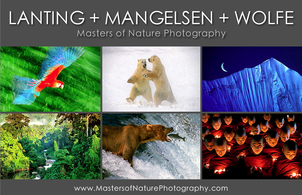 Masters Of Nature Photography Workshop