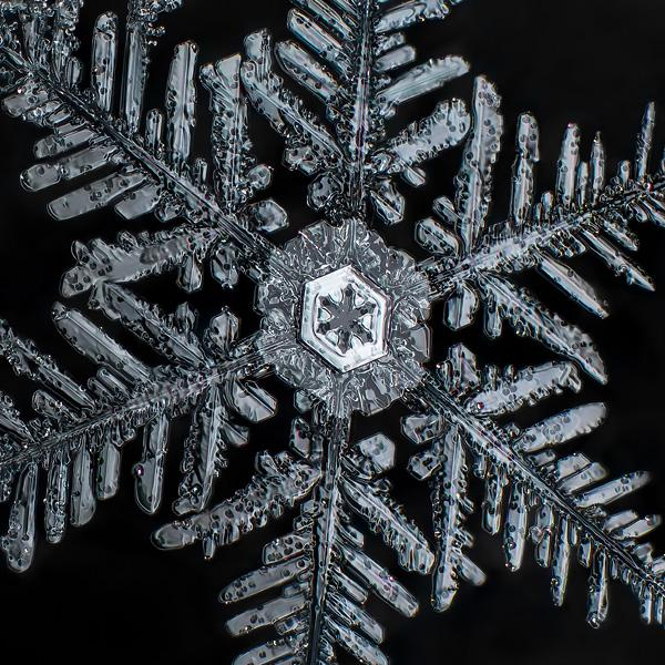 Extreme macro close up of snowflakes crystal structure macro extension tubes photography depth of field tips how to shoot take pictures