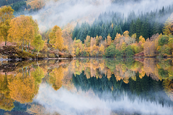 Fall colors autumn reflection mist fog in the Scottish Highlands United Kingdom