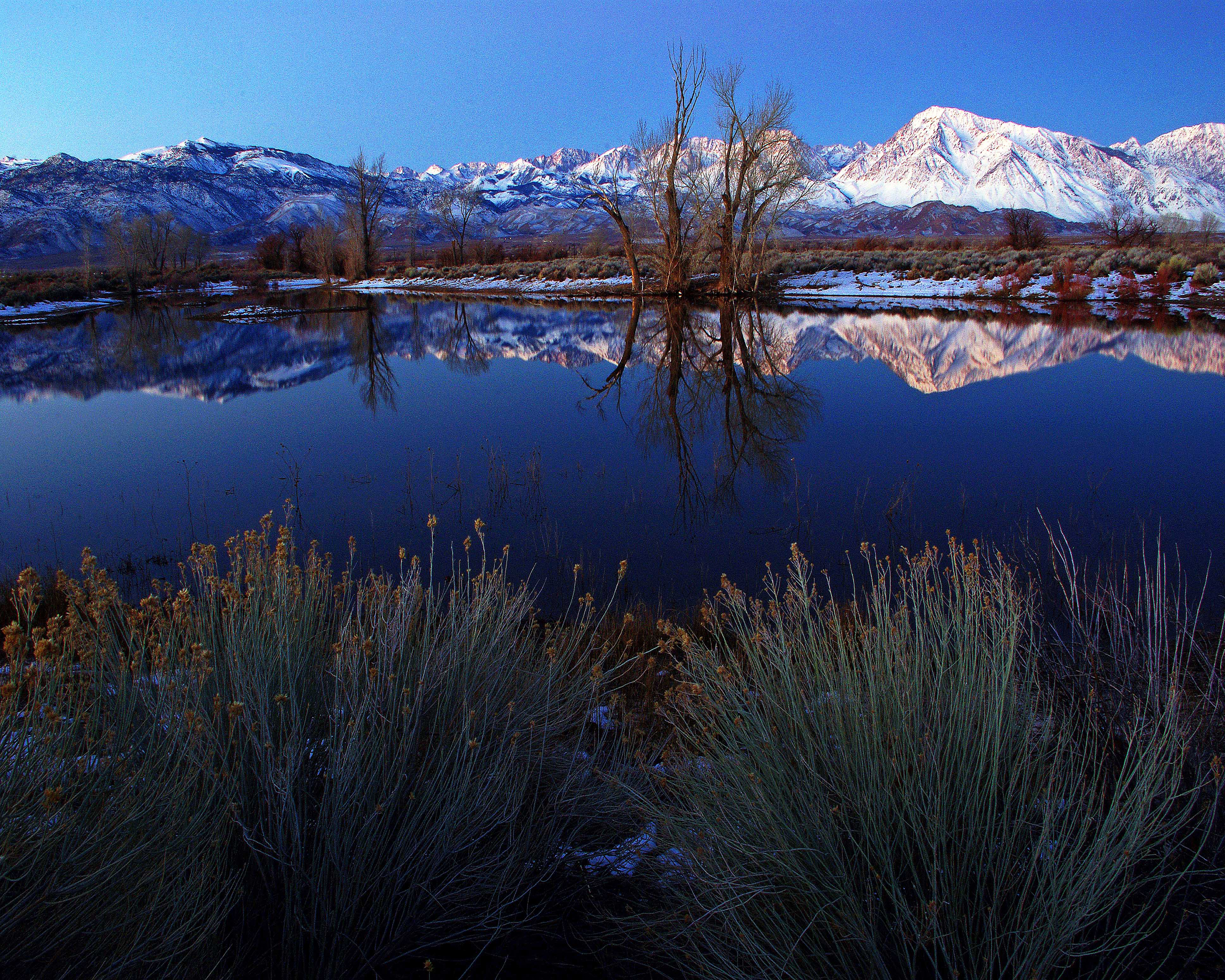 Farmer's Pond Owens Valley